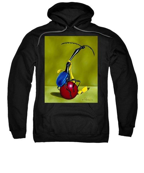 Balancing Act Sweatshirt