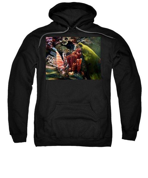 Barnacle Buddies Sweatshirt
