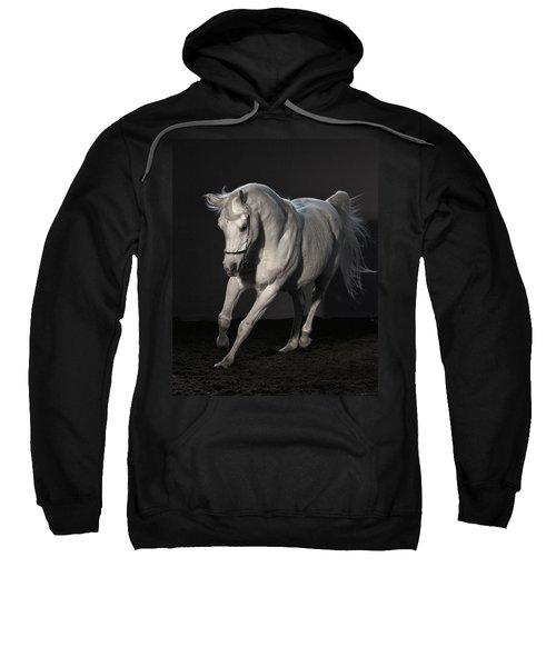 Beautiful Dancer Sweatshirt