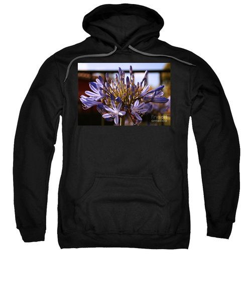 Becoming Beautiful Sweatshirt