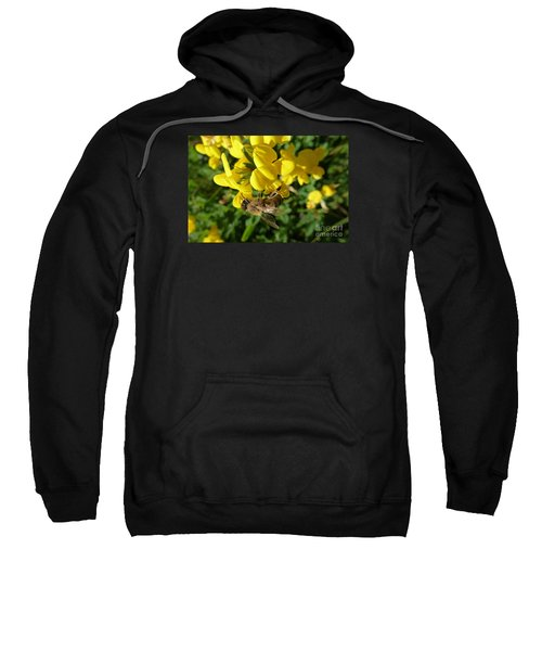 Bee And Broom In Bloom Sweatshirt