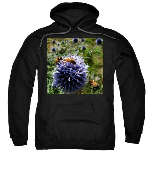 Bee Circles Sweatshirt