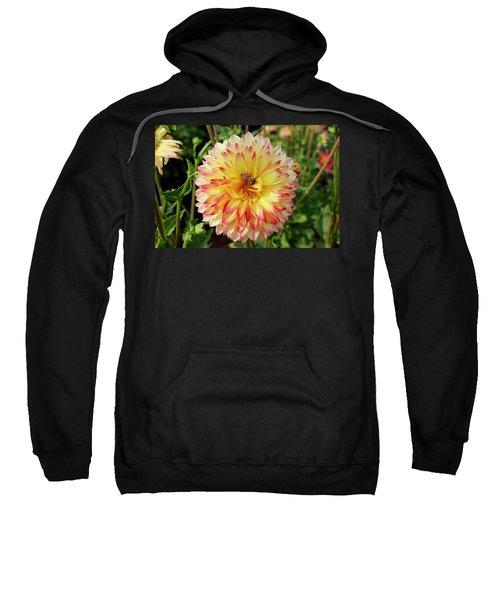 Bee In The Middle Sweatshirt