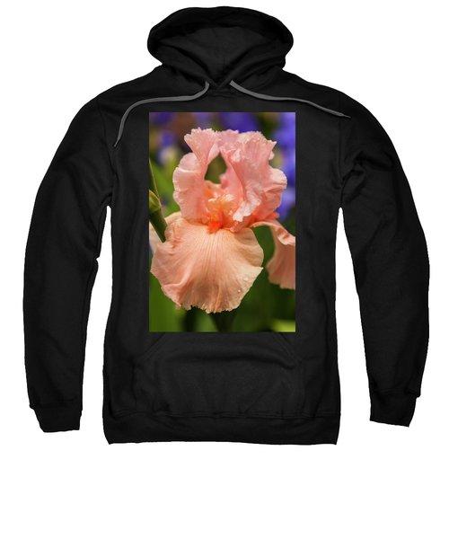 Beverly Sills Iris, 2 Sweatshirt