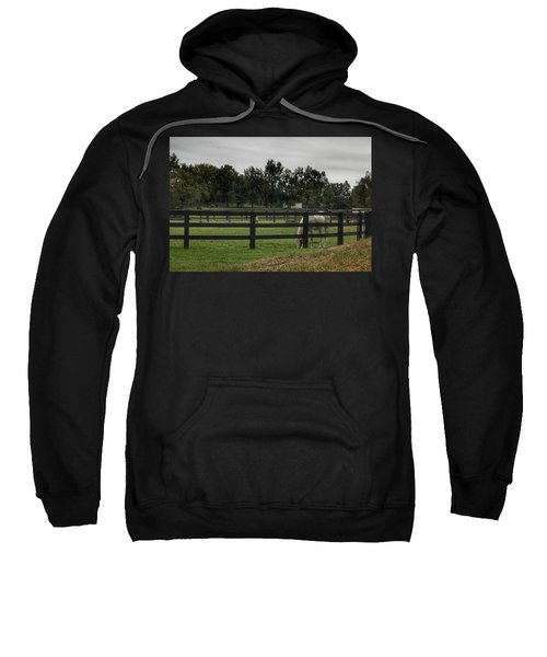 1004 - Beyond The Fence White Horse Sweatshirt