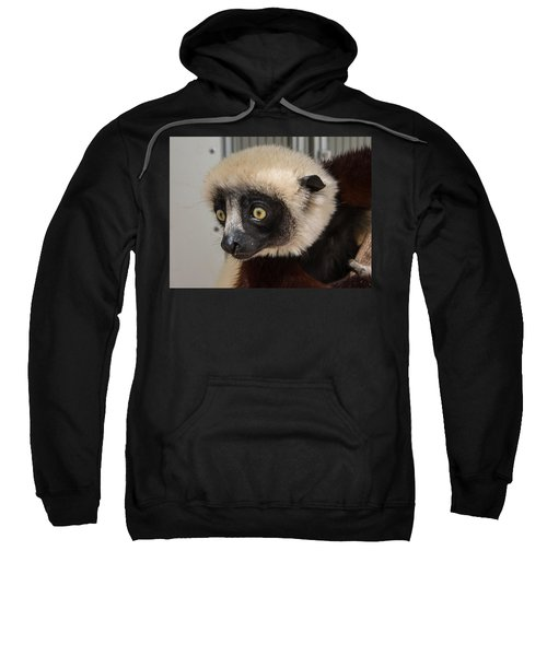 A Very Curious Sifaka Sweatshirt