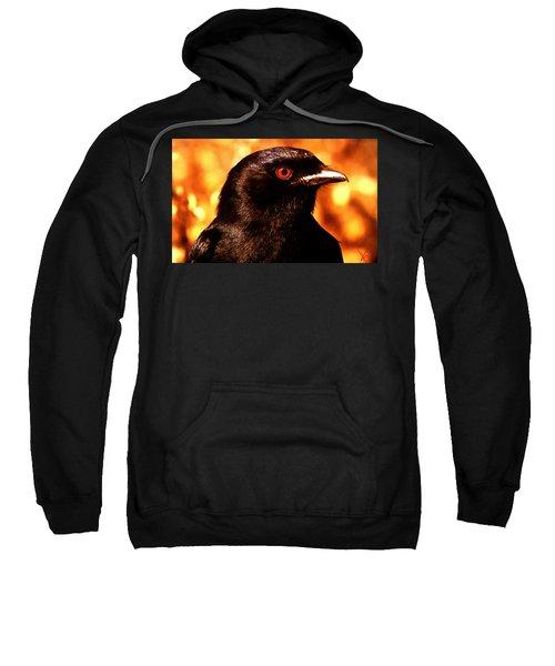 Bird Friend  Sweatshirt
