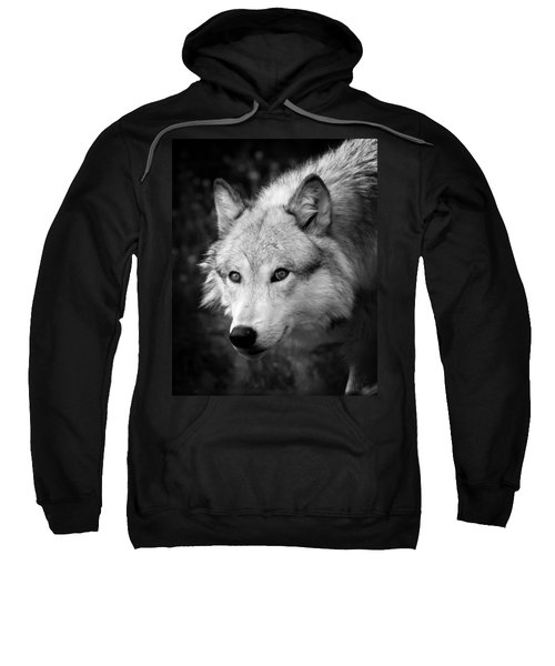 Black And White Wolf Sweatshirt