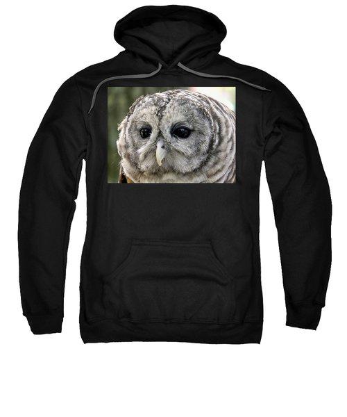 Black Eye Owl Sweatshirt