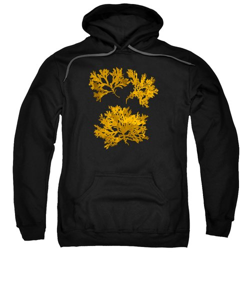 Sweatshirt featuring the mixed media Black Gold Leaf Pattern by Christina Rollo