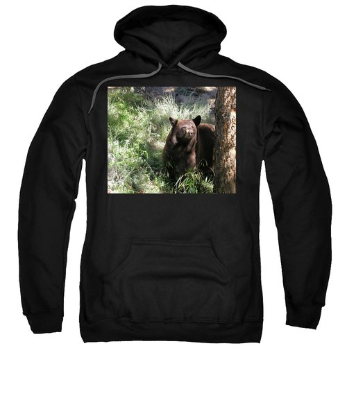 Blackbear3 Sweatshirt