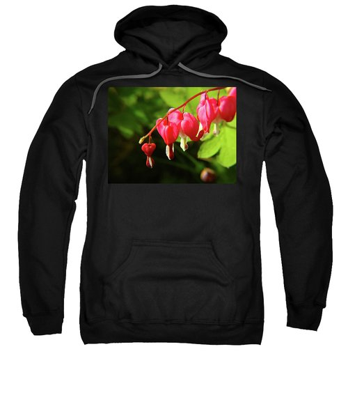 Bleeding Hearts Sweatshirt