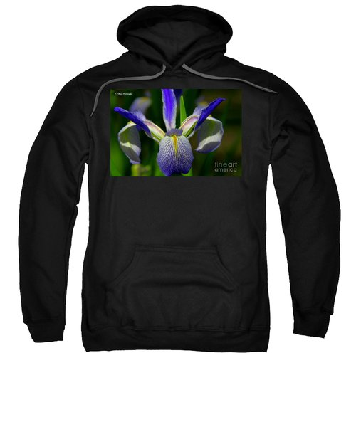 Blue Flag Iris Sweatshirt