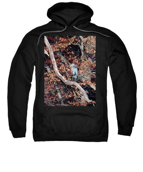 Blue Heron In Tree Sweatshirt