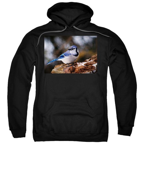 Blue Jay Day Sweatshirt