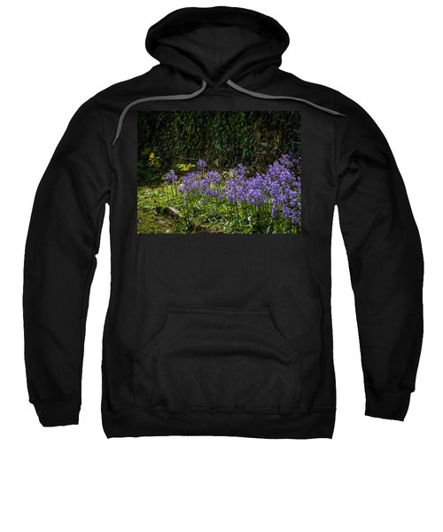 Sweatshirt featuring the photograph Bluebells In Kilrush Town by James Truett