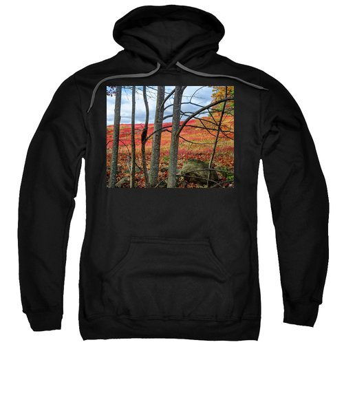 Blueberry Field Through The Wall - Cropped Sweatshirt