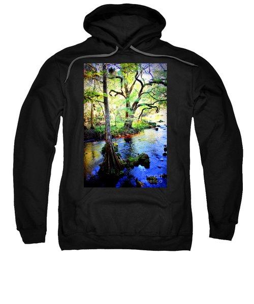 Blues In Florida Swamp Sweatshirt