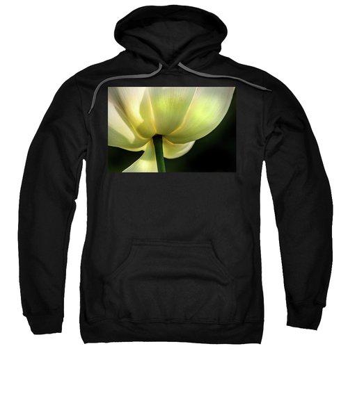 Bottom Of Lotus Sweatshirt