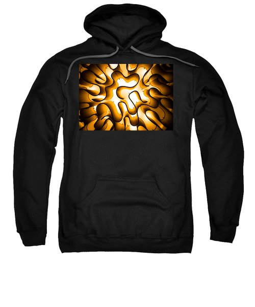 Brain Lighting Sweatshirt
