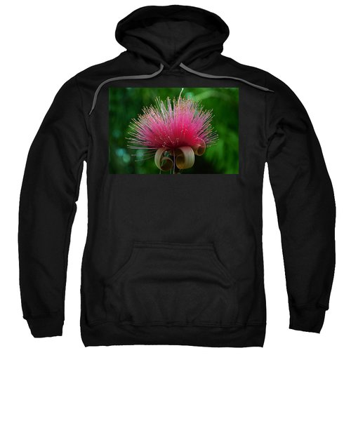 Brazilian Barbers Brush Sweatshirt