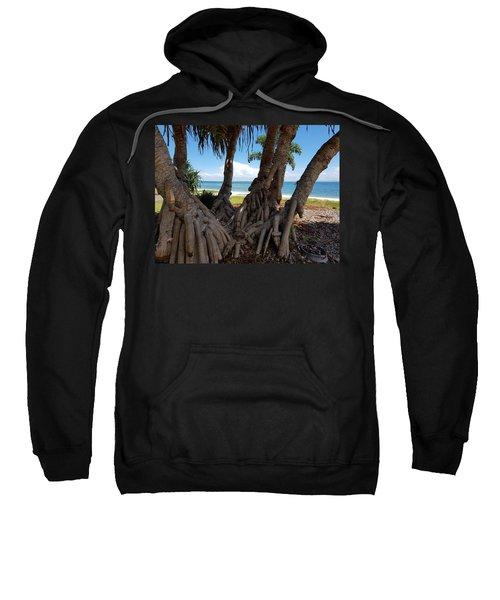 Bribie Trees  Sweatshirt