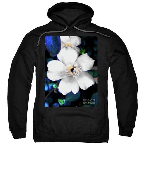 Bright Blue Accents White Vinca Sweatshirt