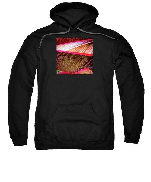 Bright Leaves 548 Sweatshirt