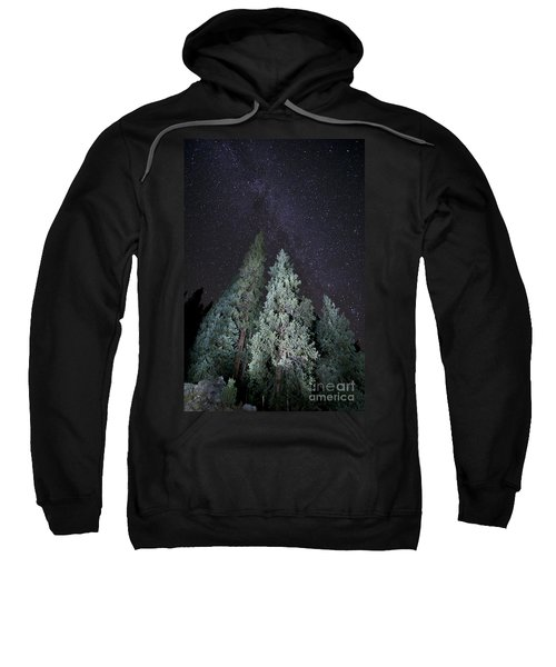 Bright Night Sweatshirt
