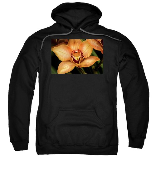 Brookside Orchid Sweatshirt