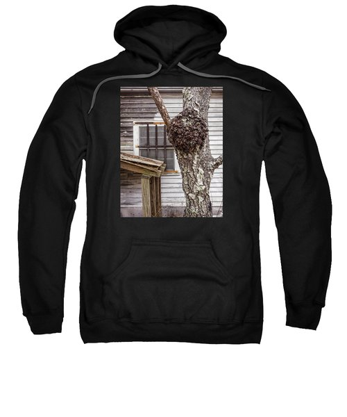 Burl And Window Sweatshirt