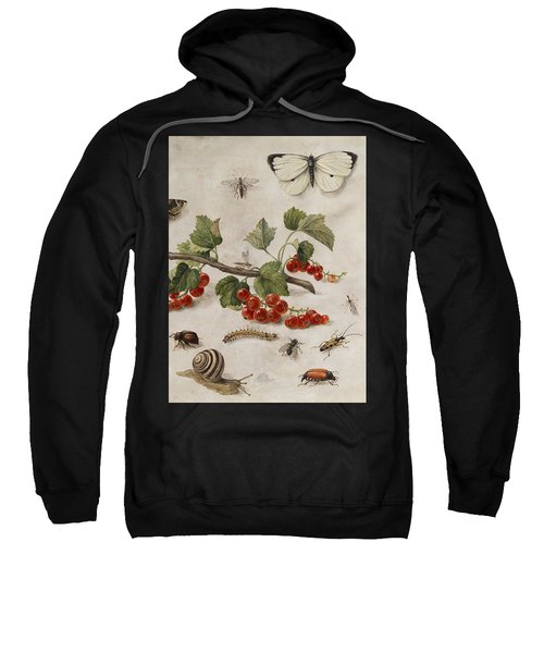 Butterflies, Insects And Currants Sweatshirt