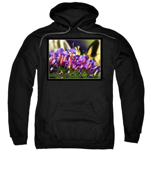 Butterfly Brunch Sweatshirt