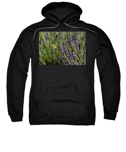 Butterfly N Lavender Sweatshirt