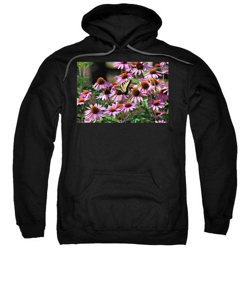 Butterfly On Coneflowers Sweatshirt