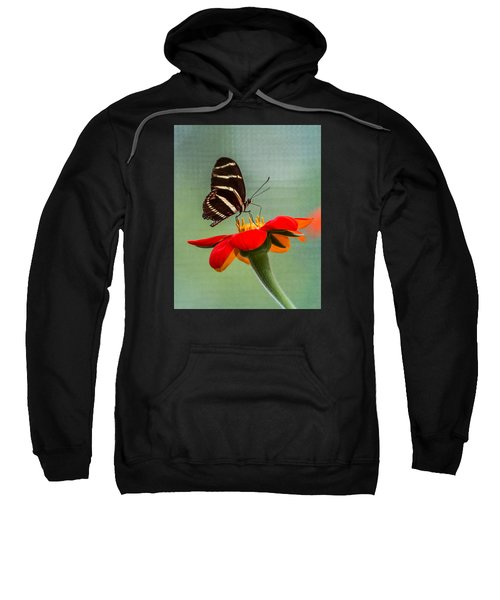 Butterfly Zebra Longwing On Zinnia Sweatshirt