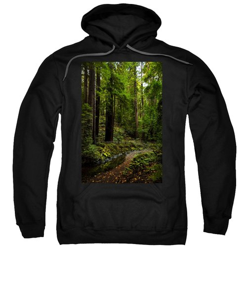 By The Stream In Muir Woods Sweatshirt