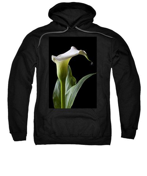 Calla Lily With Drip Sweatshirt