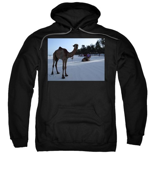 Camel On Beach Kenya Wedding 6 Sweatshirt