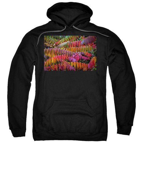 Sweatshirt featuring the photograph Carnival Of Autumn Color by Bill Pevlor