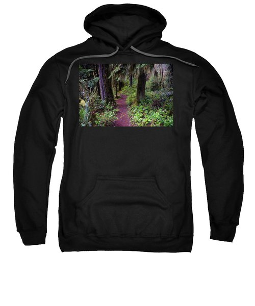 Cedar Creek Trail #3 Sweatshirt