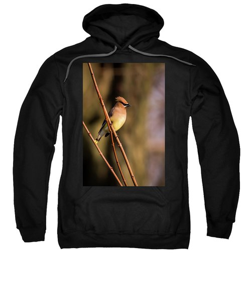 Cedar Waxwing On Branch Sweatshirt