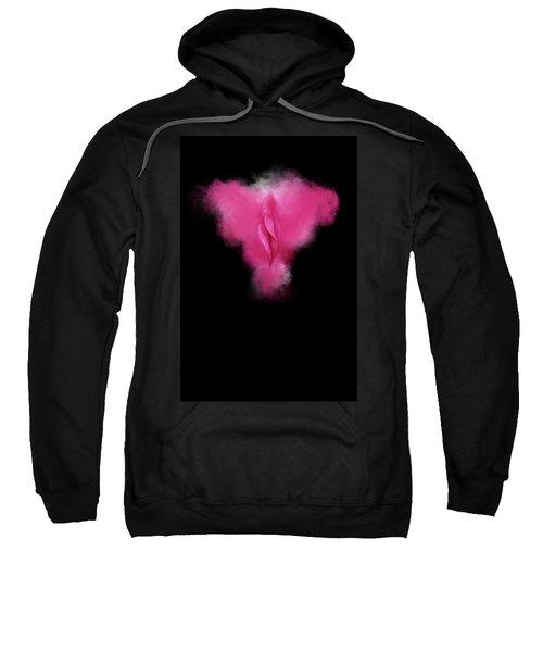 Charlize Pink Sweatshirt