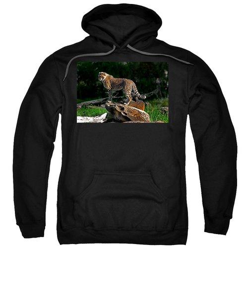 Cheetah Cub Finds Her Pride Rock Sweatshirt by Miroslava Jurcik