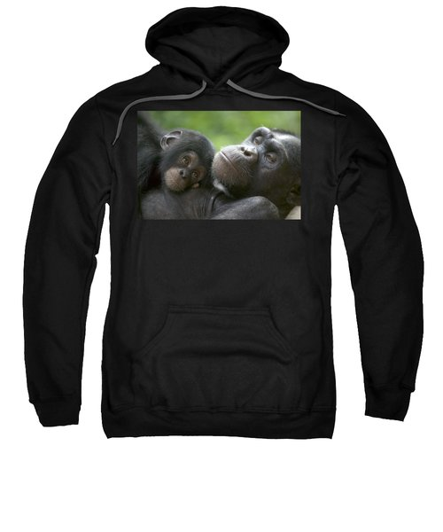Chimpanzee Mother And Infant Sweatshirt
