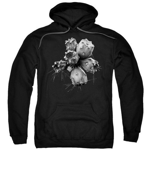 Cholla Fruit S49 Sweatshirt