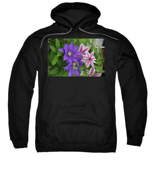 Clematis Purple And Pink White Sweatshirt