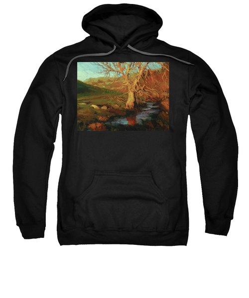 Close Of Day Sweatshirt