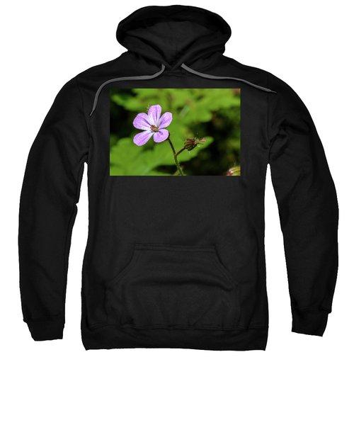 Close Up Of Shining Cranesbill A Sweatshirt