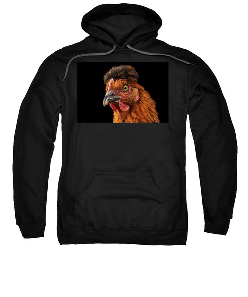 Closeup Ginger Chicken Isolated On Black Background In Profile View Sweatshirt